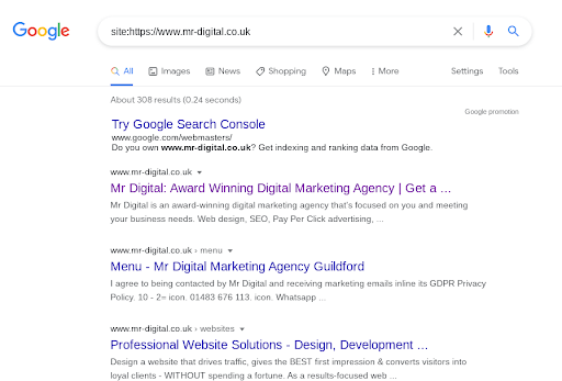 Page Indexing in Google Search Results